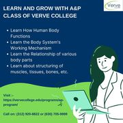 Learn And Grow With A&P Class Of Verve College